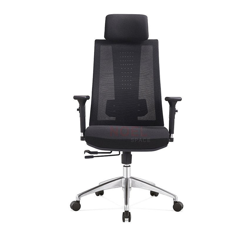 Most popular ergonomic mesh chair with whole back height adjustable A2908